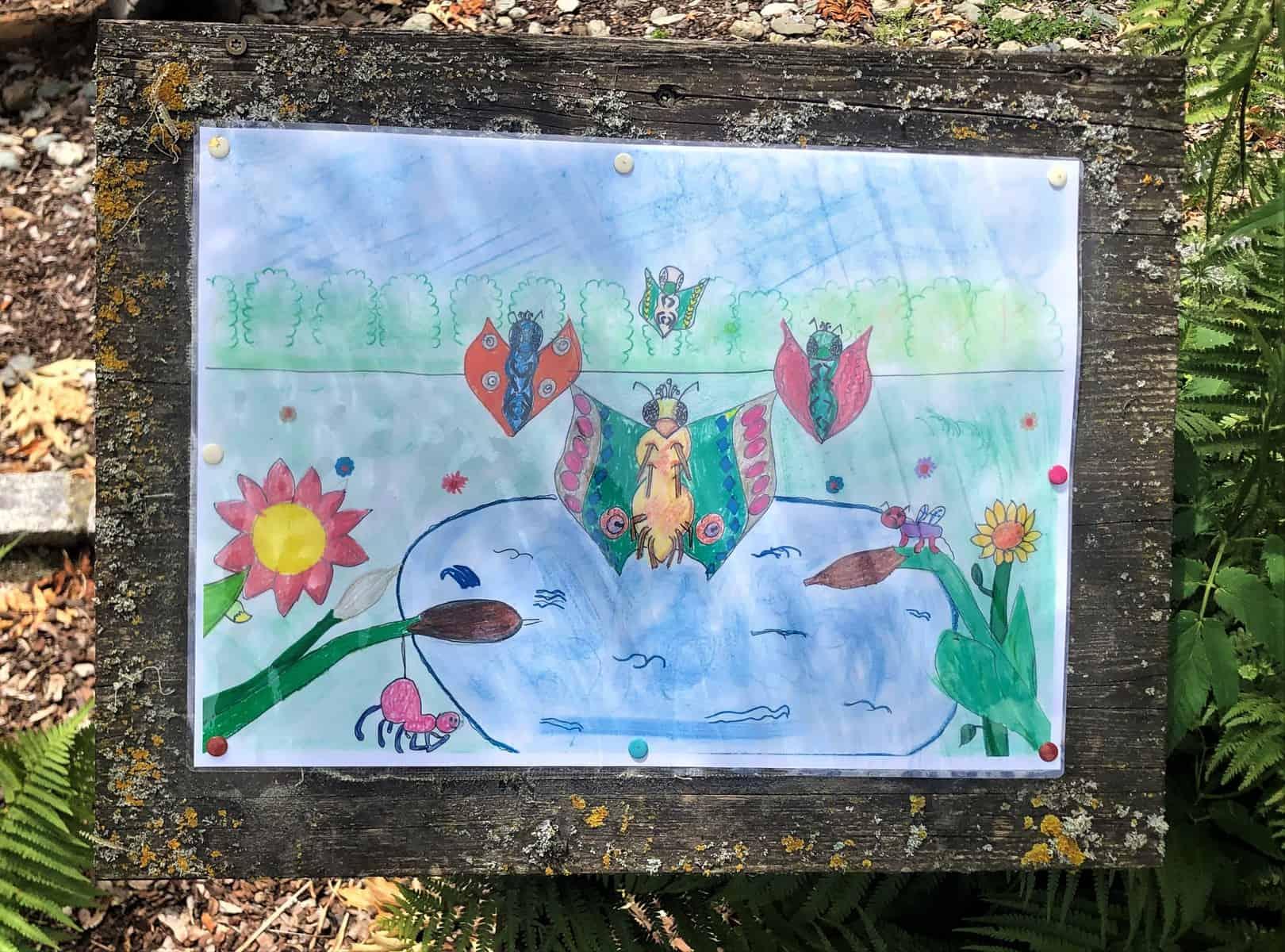 Kreativität zu Gunsten der Artenvielfalt