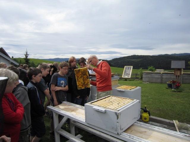 Bienen-Exkursion